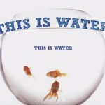 """""""This is water"""", por David Foster Wallace"""